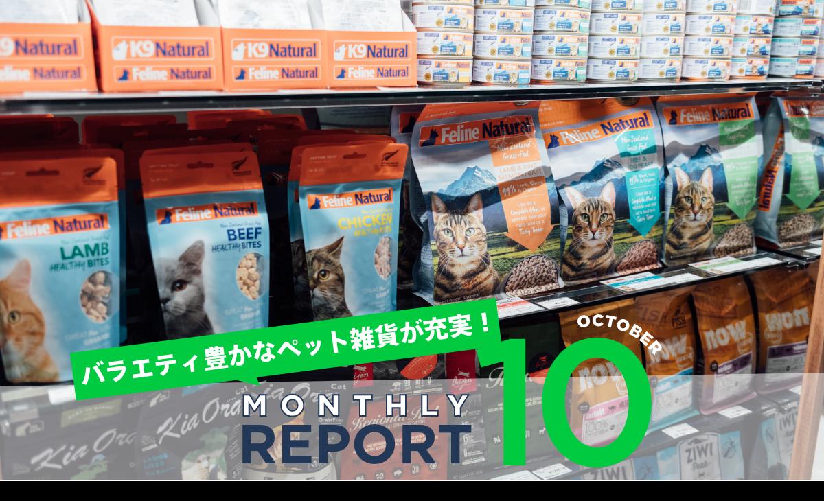 【Monthly REPORT 10】バラエティ豊かなペット雑貨が充実!